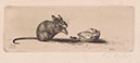 Richard Müller          (1874-1954),Maus mit Nuß- Radierung, Etching,1910 - Mouse          with a nut,the fur of the mouse is virtually perceptible,          Best.Nr. 010706